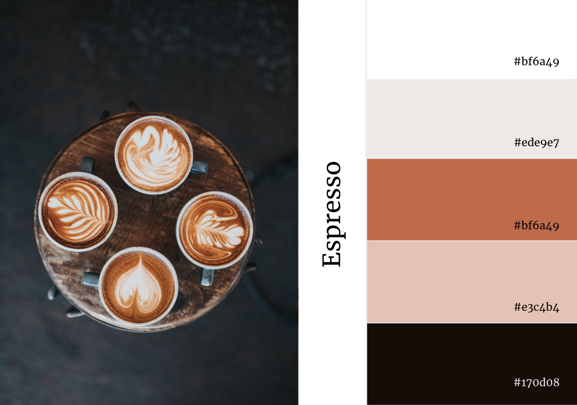neutral colour pallette espresso brown grey